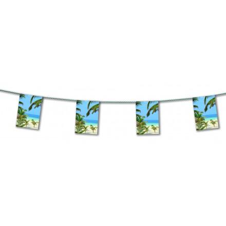 Hawai bunting