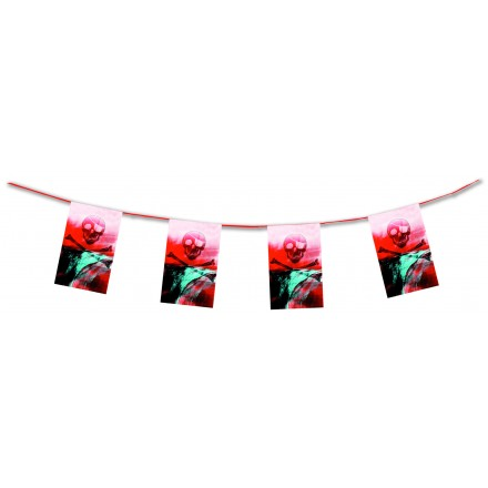 pirate bunting 4,50m skull flame resistant paper banner flags party decoration