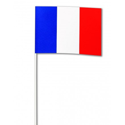 France hand flag 14x21cm (pack of 100) French hand held party supplies