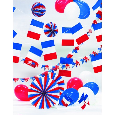 France kit French decorating pack 14th July party supplies