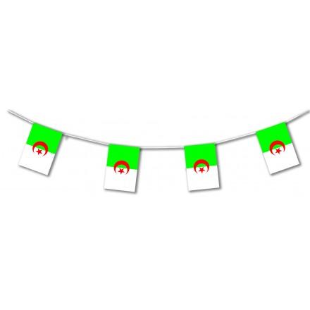 Algeria plastic flag bunting