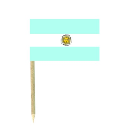 Argentina flag picks - pack of 50 food wood sticks party decoration