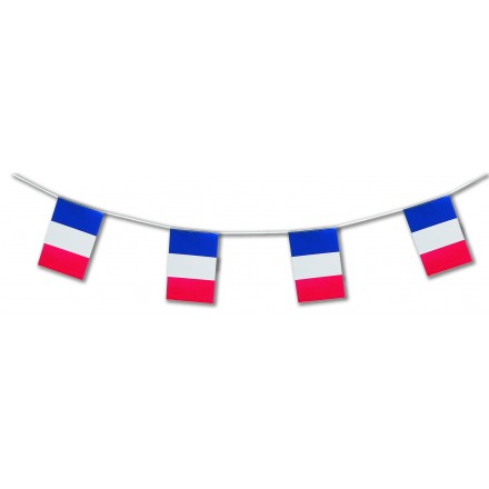 France plastic bunting