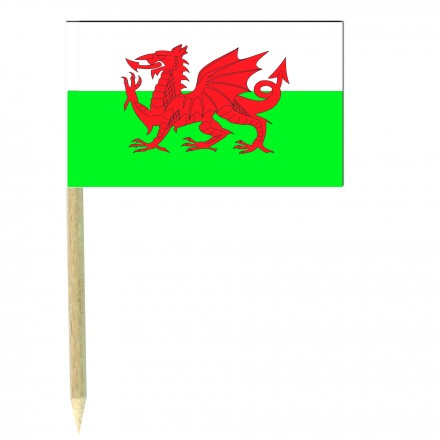 Welsh cocktail picks - pack of 50