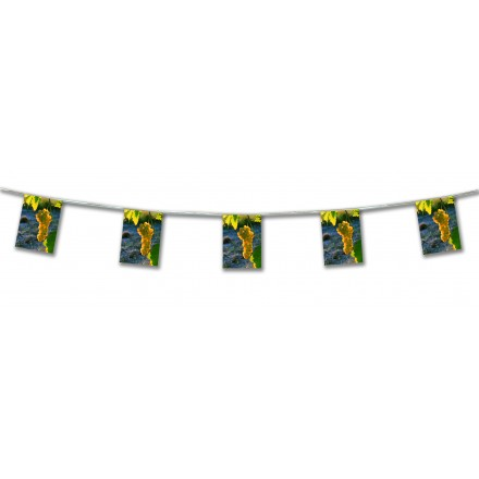 White photo grape bunting 4,50m paper banner