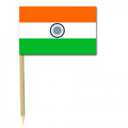 Indian Flag Picks - Pack of 50 food wood sticks India party supplies