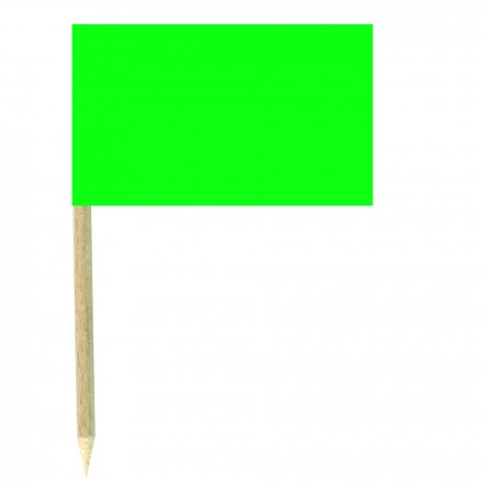 Green Paper Cocktail Flag Sticks - Pack of 50 Food Wood Picks