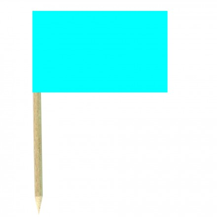 Turquoise Blue Cocktail Flag Sticks - Pack of 50 Cobalt Blue Food Wood Picks