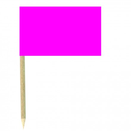 Bright Pink Cocktail Flags Sticks - Pack of 50 Fushia Food Wood Picks